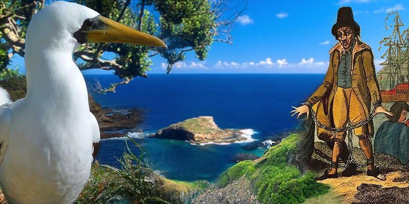 Norfolk Island 800 x 400